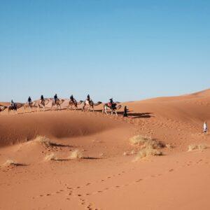 Trail across Sahara desert